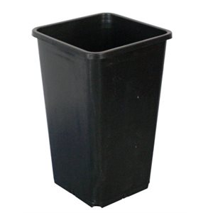 FHD 1.8L SQUARE BLACK POT 4.75''X4.75''X8'' (1)