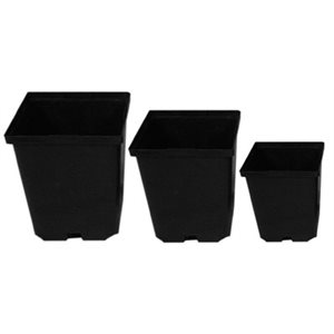 "DEEP SQUARE POT 5.5"" (256)"