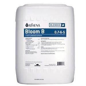 ATHENA FLORAISON B 20L (1)