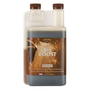 BIOCANNA BIO BOOST 250 ML (1)