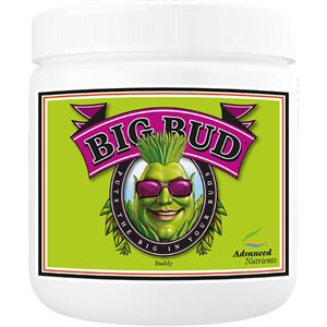 ADVANCED NUTRIENTS BIG BUD POWDER 2.5KG (1)