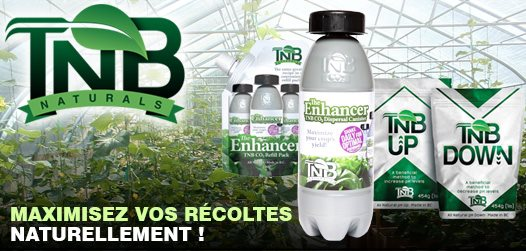 TNB-FR