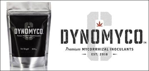 dynomyco-c_border